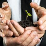 business nurture