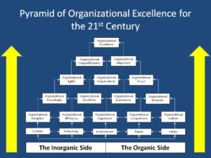 organic and inorganiz pyramid
