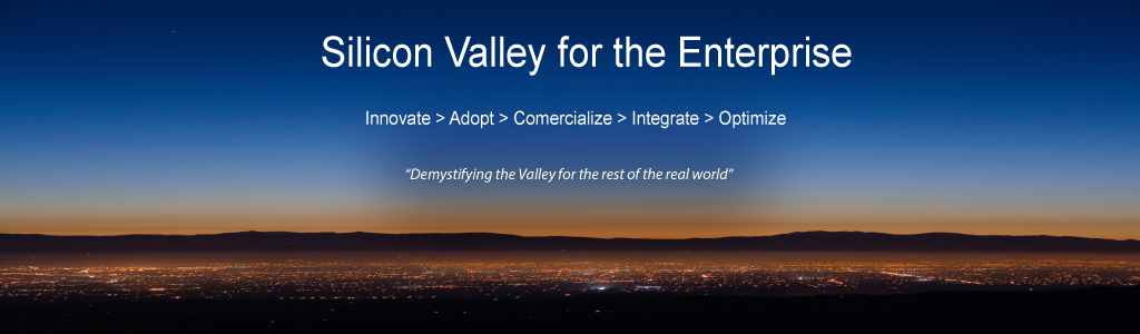 Silicon Valley for the Enterprise