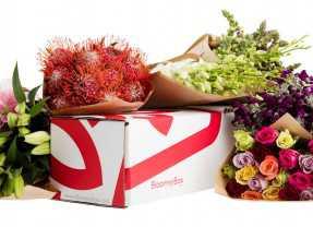 Bloomin' Marvellous – Platform Sends Flowers on Demand
