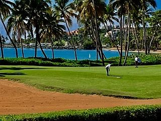 Beach Village 236 1 bedroom Ocean View