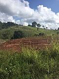 BARRIO GATO-SOLAR | Bienes Raíces > Residencial > Terrenos > Solares | Puerto Rico > Orocovis