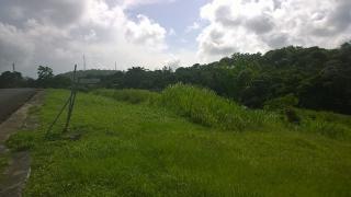 VILLAS DEL REY RIO GRANDE (solar)