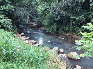 Cerca el Rio Las Pailas 3,945  mts