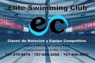 Clases de Natacion y Equipo Competitivo