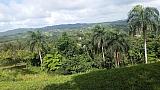 1,000 metros  Bo Montellanos | Bienes Raíces > Residencial > Terrenos > Solares | Puerto Rico > Cidra