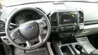 Ford F-150 XL Negro 2017