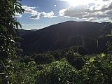 FINCA LAS HATOLLOSAS (ANTIGUA CAFETALERA) (7) | Bienes Raíces > Residencial > Terrenos > Fincas | Puerto Rico > Villalba