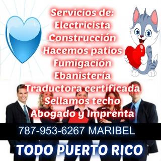 Yo te ayudo buen precio toda la isla Estimados gratis 787-953-6267 Maribel