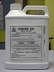 AMINE 6D DE 32 OZ