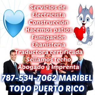 La mejor traductora y rapida y economica ven compruebalo 787-534-7062 Maribel
