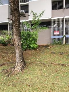 Alquiler Apart. Parque Centro Hato Rey