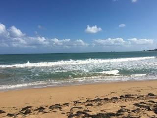 Crescent Beach ,Palmas Del mar,Apartamento