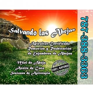 Apicultor / Abejas / Miel