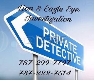 Lion & Eagle Eye Investigation