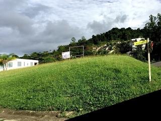 Gran Vista,Gurabo,Solar