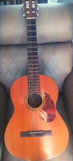 """Guitarra """"Acueléctrica"""""""