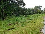 FINCA DE 8 CUERDAS BARRIO CAYUCO UTUADO CERCA PARQUE CAGUANA | Bienes Raíces > Residencial > Terrenos > Fincas | Puerto Rico > Utuado