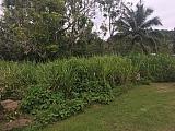 Solar 825.16mts Bo. Rincon, Cidra | Bienes Raíces > Residencial > Terrenos > Solares | Puerto Rico > Cidra