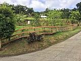 Barrio Maton Abajo - Cayey - #11064   Bienes Raíces > Residencial > Terrenos > Solares   Puerto Rico > Cayey