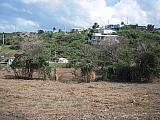 Vieques Paraíso llano de 1.5 Cdas frente carretera 200 y playa | Bienes Raíces > Residencial > Terrenos > Solares | Puerto Rico > Vieques