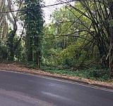 REO #2924 PR 155 Km 54.4 FRANQUEZ & BARAHONA WARD | Bienes Raíces > Residencial > Terrenos > Solares | Puerto Rico > Morovis