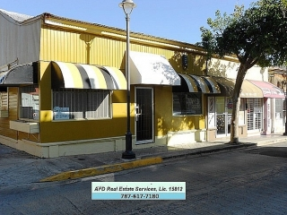 Centro Urbano Calle Palmer