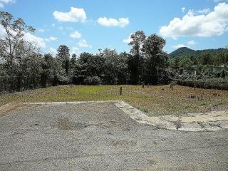 Solar 1,600m, monte grande, Cabo Rojo