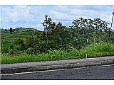 Colinas I !REBAJADO! | Bienes Raíces > Residencial > Terrenos > Solares | Puerto Rico > Orocovis