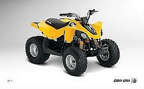 Can-Am DS90 2013