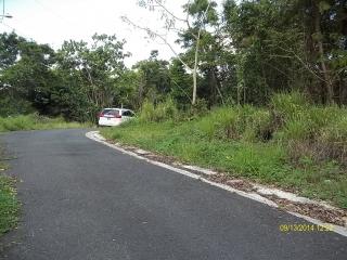 CAGUAS ALTURAS DE CAGUAS 2 CDAS