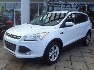 FORD ESCAPE SE 2014 787-485-6704