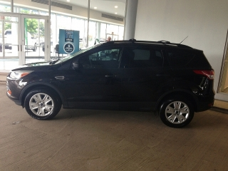 FORD ESCAPE 2013 787-485-6704