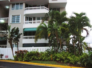 Monte Mayor Condominium