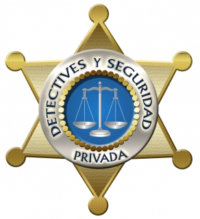 Background Investigator & Investigations - detectivesyseguridadprivadapr.com