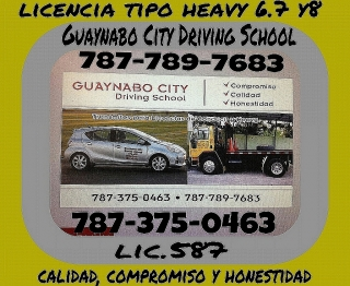 guaynabo city driving school lic.587