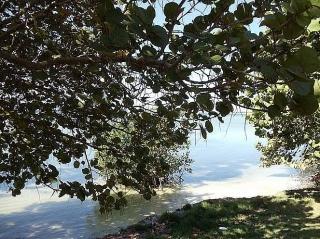 VILLA PARAISO, de camino a Playa Sucia y al Faro