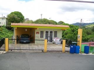 Buena Vista!!!