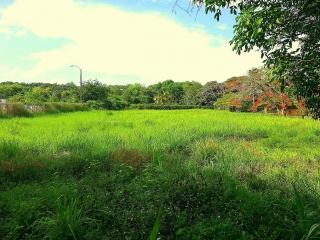 Terrenos Cerca de las Playas de Manatí