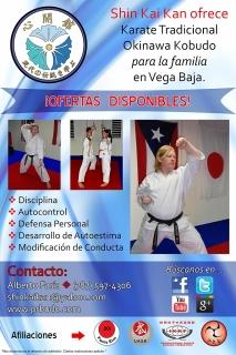 Shin Kai Kan (Shotokan Karate y Okinawan Kobudo)