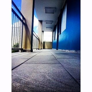 Apartamentos Portofino - Se Alquila / Renta