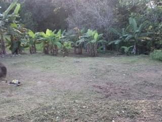 Se vende terreno en pueblo Las Piedras $30 mil
