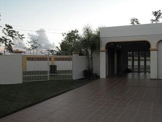 Paseo de la Ceiba, Juncos