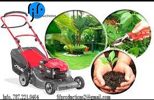 Jardinería, mantenimiento de áreas verdes, podado de arboles y mas