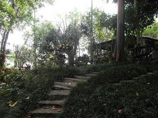 PALMASOLA, LAS MAGAS