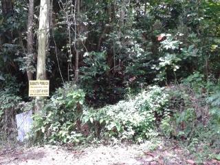 Bo. Caimito, Camino Genaro Bigio, Lote K  Carr. 842 Km 4.2