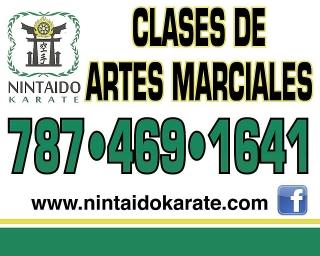 Clases de Artes Martes