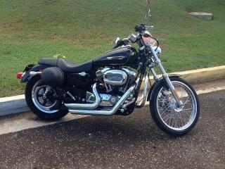 Harley Davidson 1200 Sportster Custom