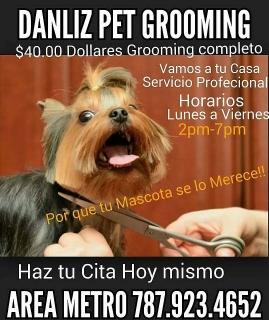 Servicio de Grooming a Domicilio Area Metro P.R