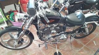 Harley Sportster 1200 Custom 99